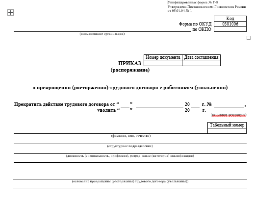 образец стандартизированного бланка Т-8