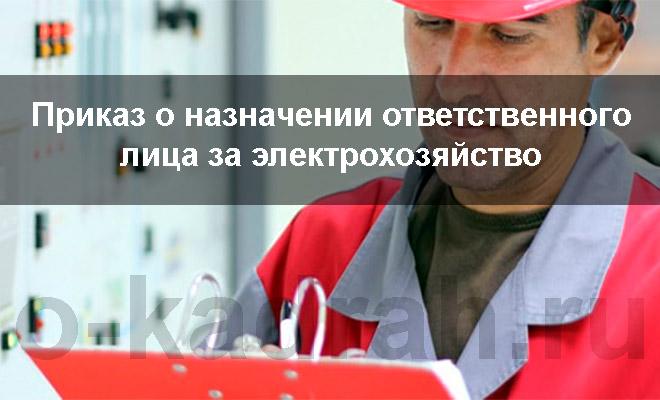 приказ о назначении ответственного лица за электрохозяйство